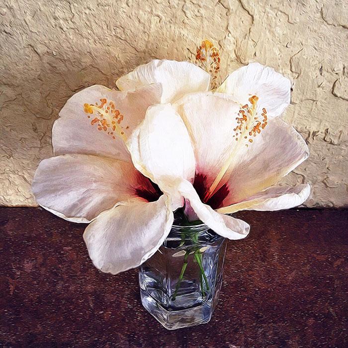 painterly-hibiscus
