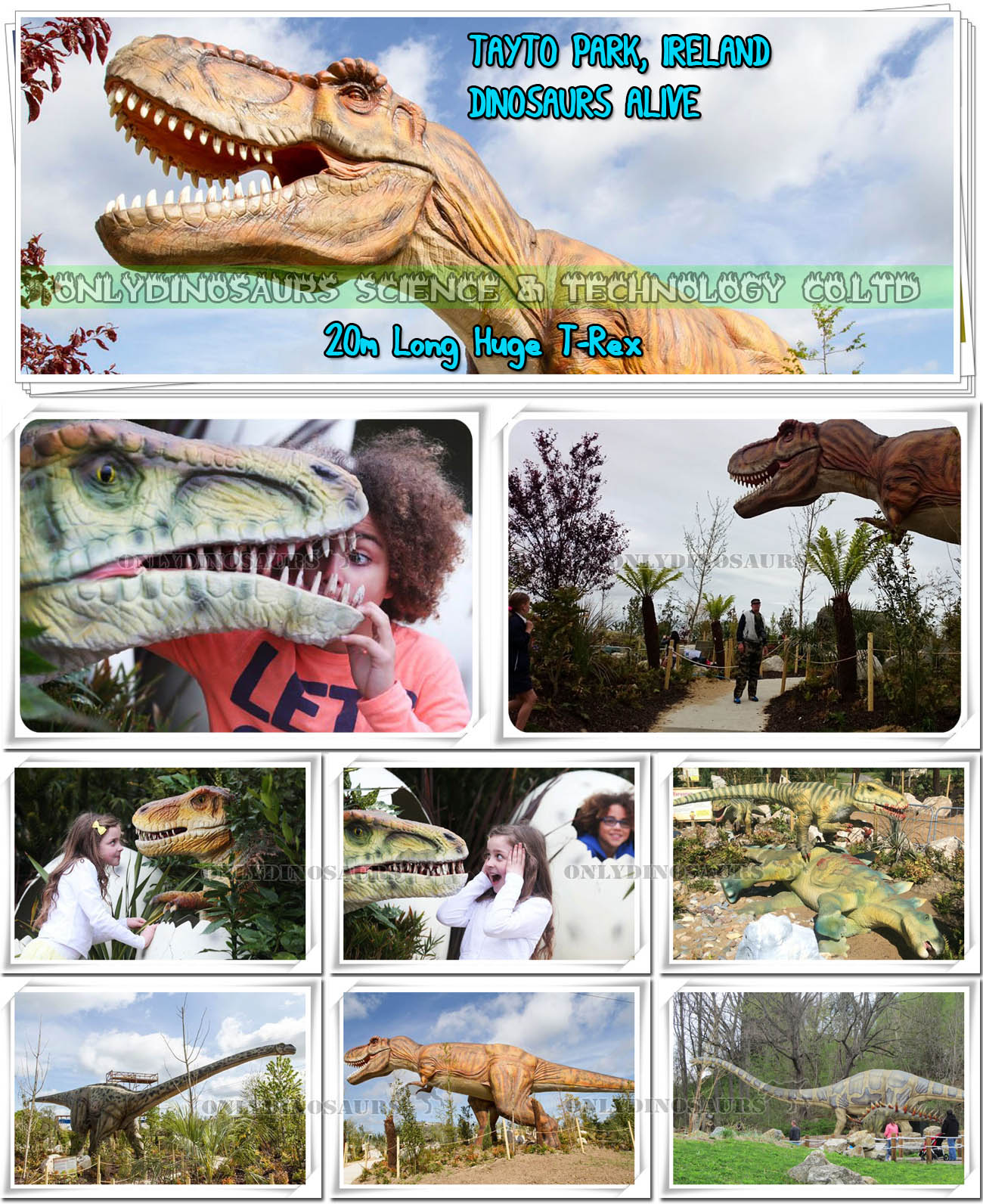Tayto Park Dinosaurs Alive