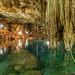 40. Cenotes, Yucatan, Mexico-10.jpg por gaillard.galopere