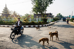 Myanmar #056
