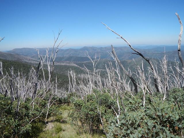 Mt Feathertop - Razorback, Nikon COOLPIX AW100