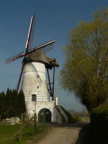 Moulin ter zeven wegen à Denderwindeke