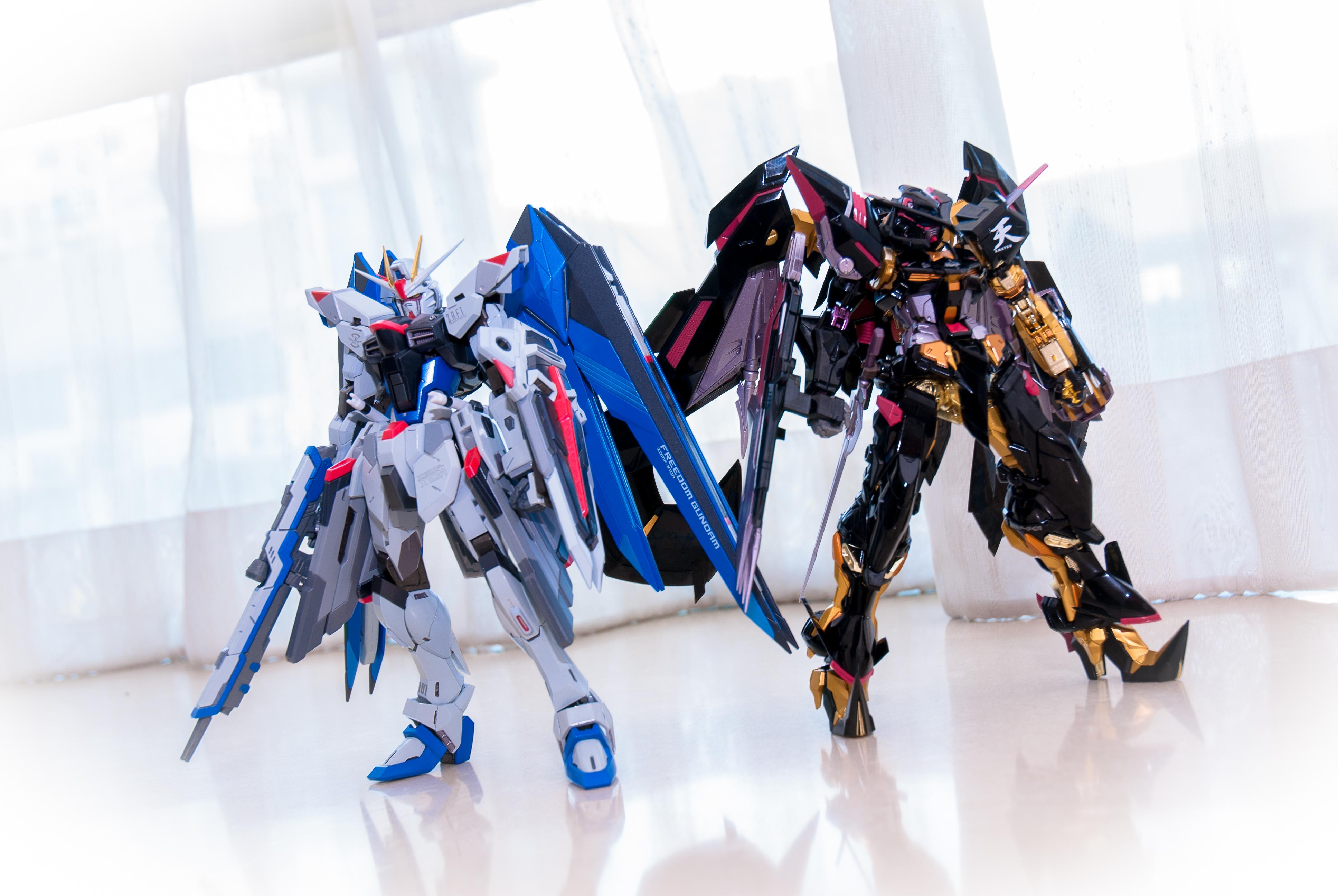 Metal Build Freedom Gundam Release Date