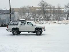 Bad Mama Jama in the snow