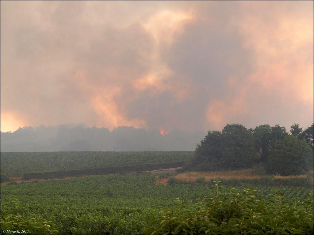 Incendie de forêt  19297007554_436226d305_b