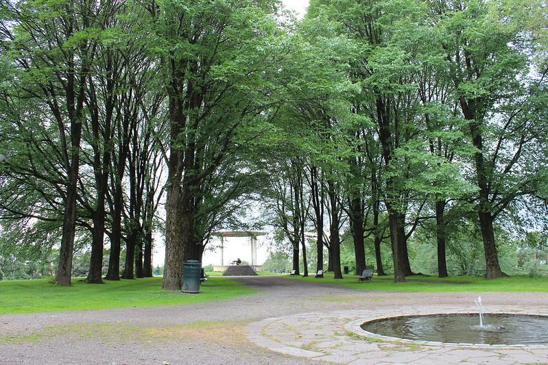 Oslo favourites, Et dryss kanel