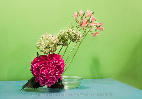 Hydrangea:Spring. Mass & Line Ikebana-Katerina Mezhekova-0718