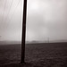 365_7Feb17#038 Poles Apart by Lois T1