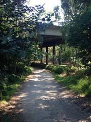 Main Yarra Trail Banksia Street underpass