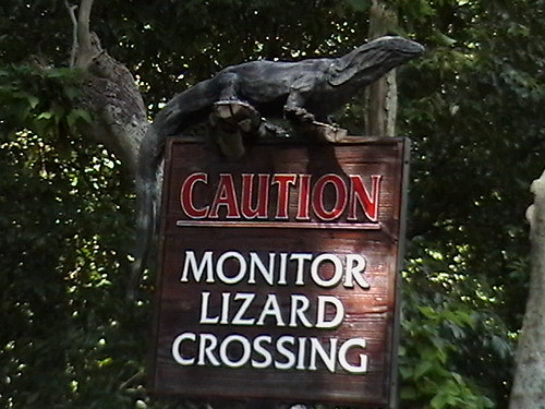 Monitor Lizard Crossing Sign