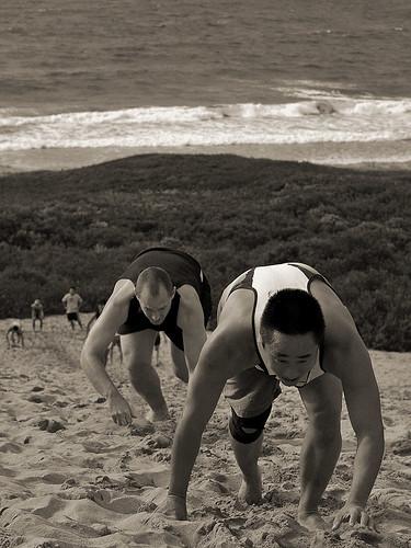 Dune Training