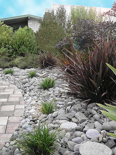 115553939 aa17ec80c8 for Native garden designs nz
