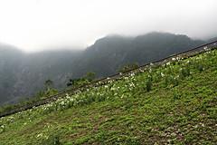 Pacific Theme - Hualien, Taiwan