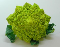 broccoli(0.0), brassica(1.0), vegetable(1.0), flower(1.0), leaf(1.0), leaf vegetable(1.0), green(1.0), produce(1.0), food(1.0), broccoflower(1.0),