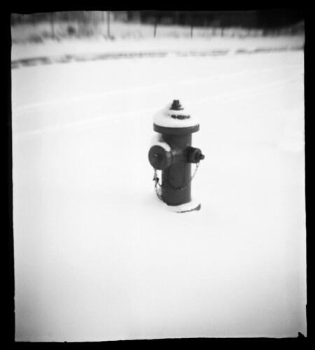 Winter Hydrant