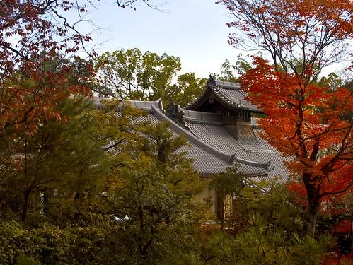 Temple Among the Trees(大徳寺) - 無料写真検索fotoq