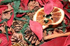Orange Petel Popori - Serenata Flowers