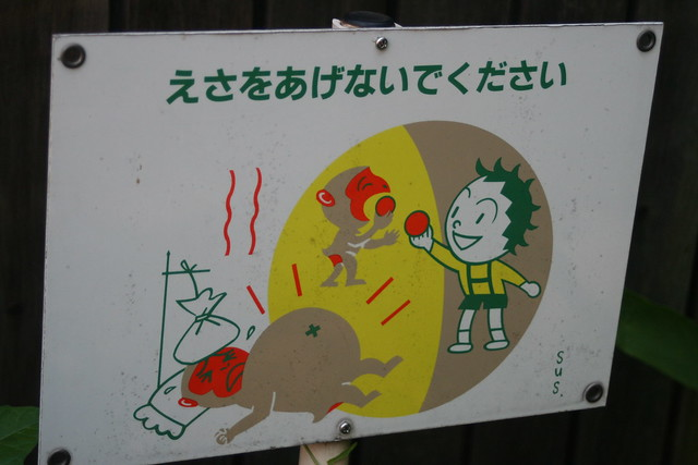 Please do not feed the monkeys