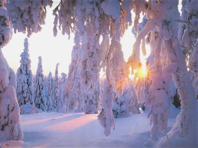 Snow Country Winter Wonderland Sunrise (1)