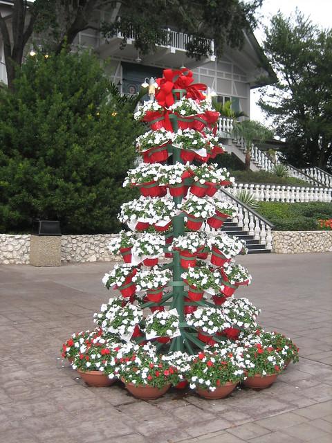 Flower Pot Christmas Tree Flickr Photo Sharing
