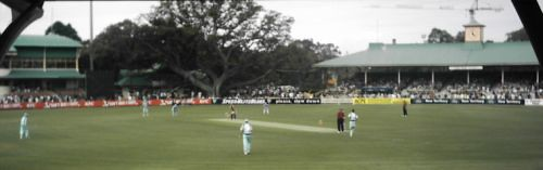 Twenty20 history at North Sydney