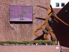 Strange statue and video