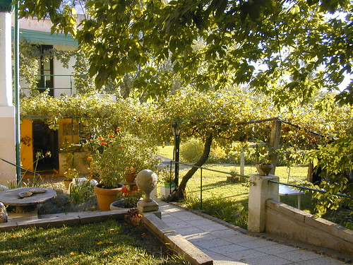 casa antigua (2) - San Javier