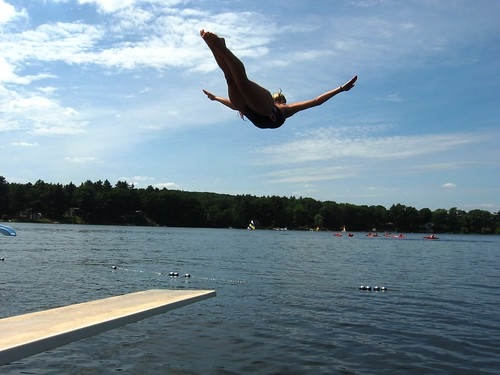 Reene's Swan Dive Photo from Flickr
