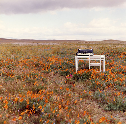 poppy fields, desk, accordian, pink shoes