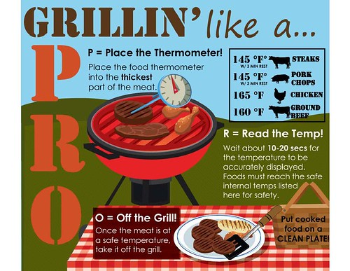 Grilling Like a PRO infographic