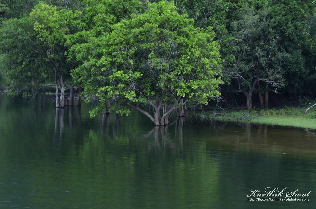 Reflection @ Aliyar Dam