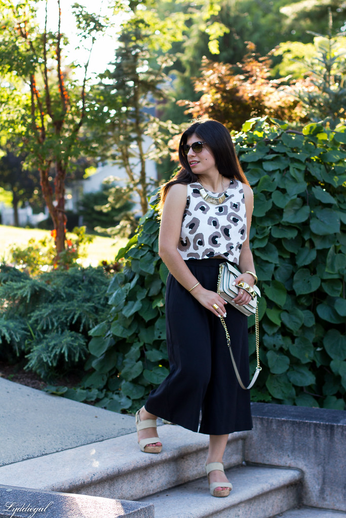 black culottes, leopard crop top, platform sandals-6.jpg