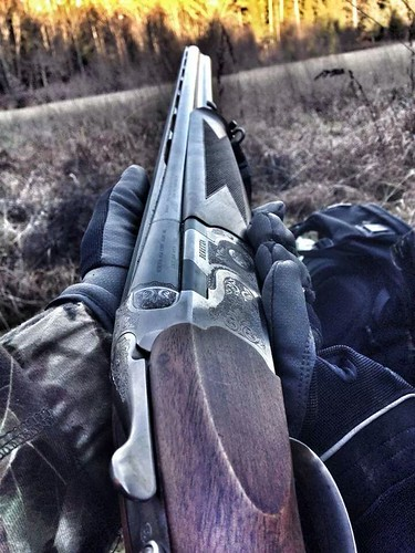 Beretta 12 guage