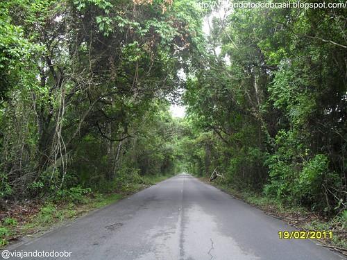 Pilar - Estrada a caminho de Marechal Deodoro