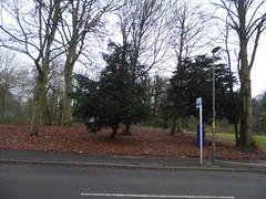 Sutton Park - Clifton Road, Sutton Coldfield