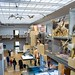 Great North Museum by Heritage Lottery Fund