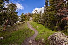 Twin Peaks (6-13-15)