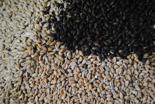 Ana _Rey posted a photo:Malts.