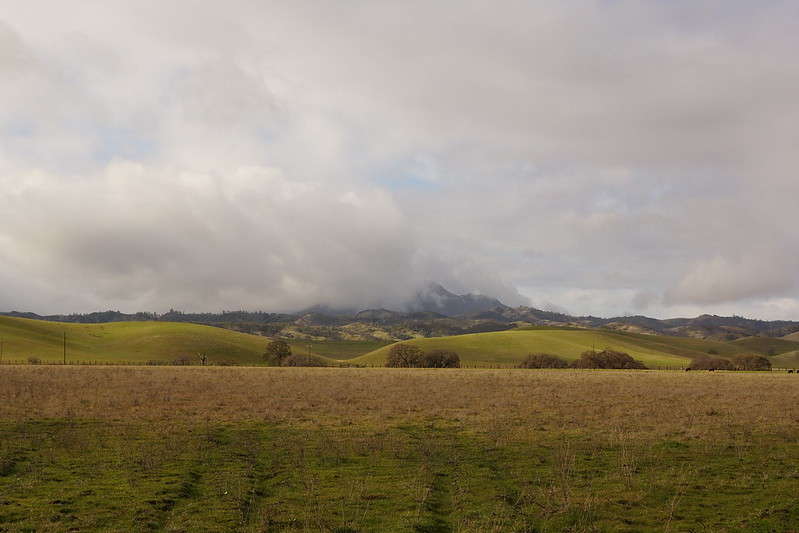 2017-01-02 Snow and Clouds on Mount Diablo (#4)