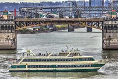 Portland Spirit On The Willamette