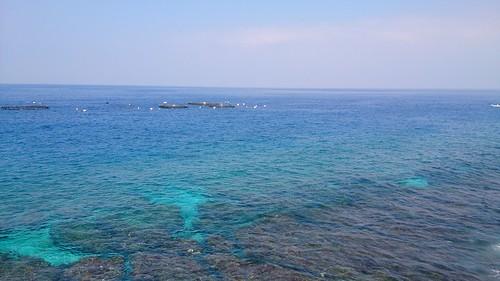 小琉球海龜出沒區。攝影:李育琴。