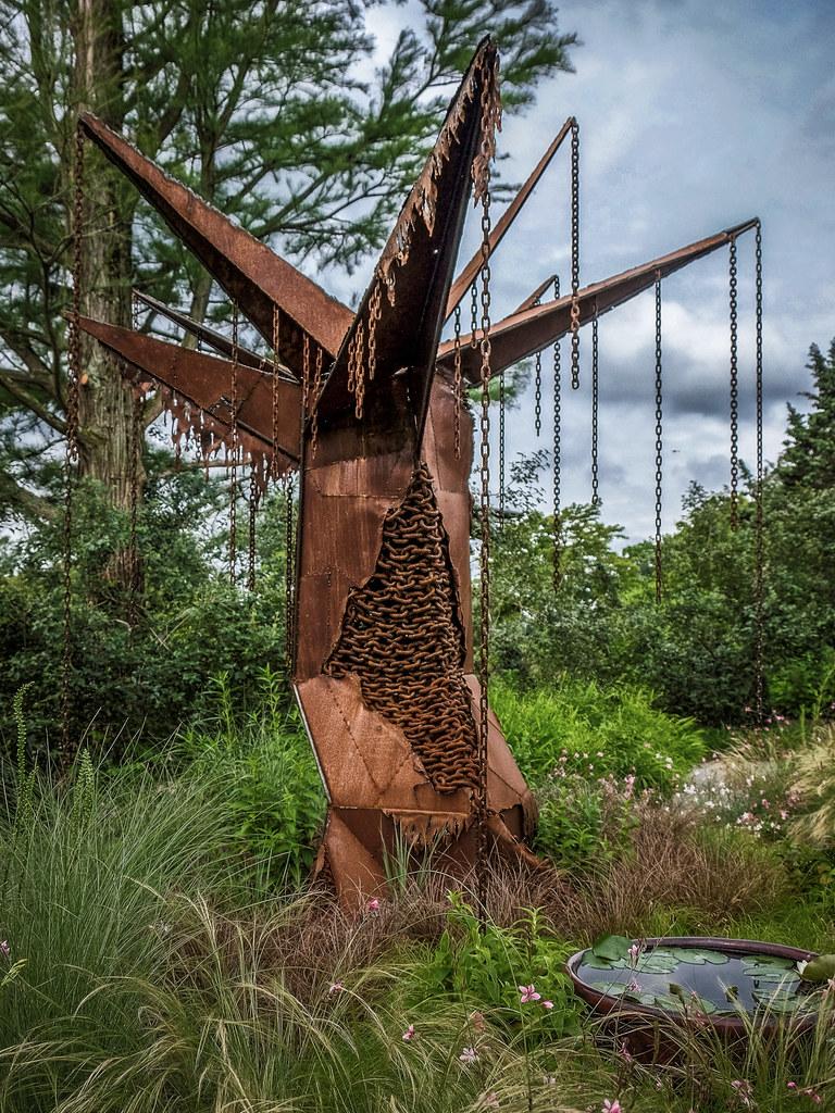 Longwood with the X-T1: Baby Shrike's Tree