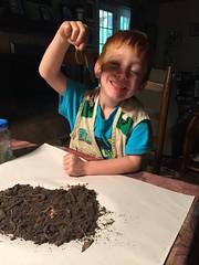 Successful worm hunt