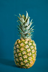 Simply pineapple.... 362/365