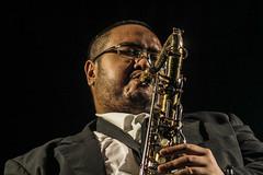 woodwind instrument, saxophone, musical instrument, music, jazz, saxophonist,
