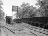 Coal hoppers on unidentified railway line [n.d.]