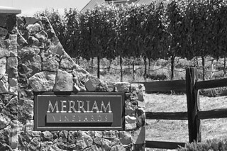 Merriam Vineyards - Gate by roland luistro, on Flickr