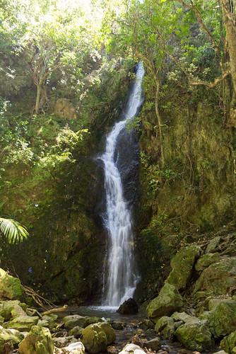 Percy Falls