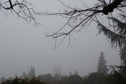 2017-01-15 No colorful Sunrise, just Fog [#3]