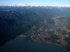 Quinault_River_-_Lake_Quinault